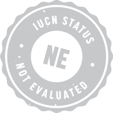 iucn_badge_not_evaluated