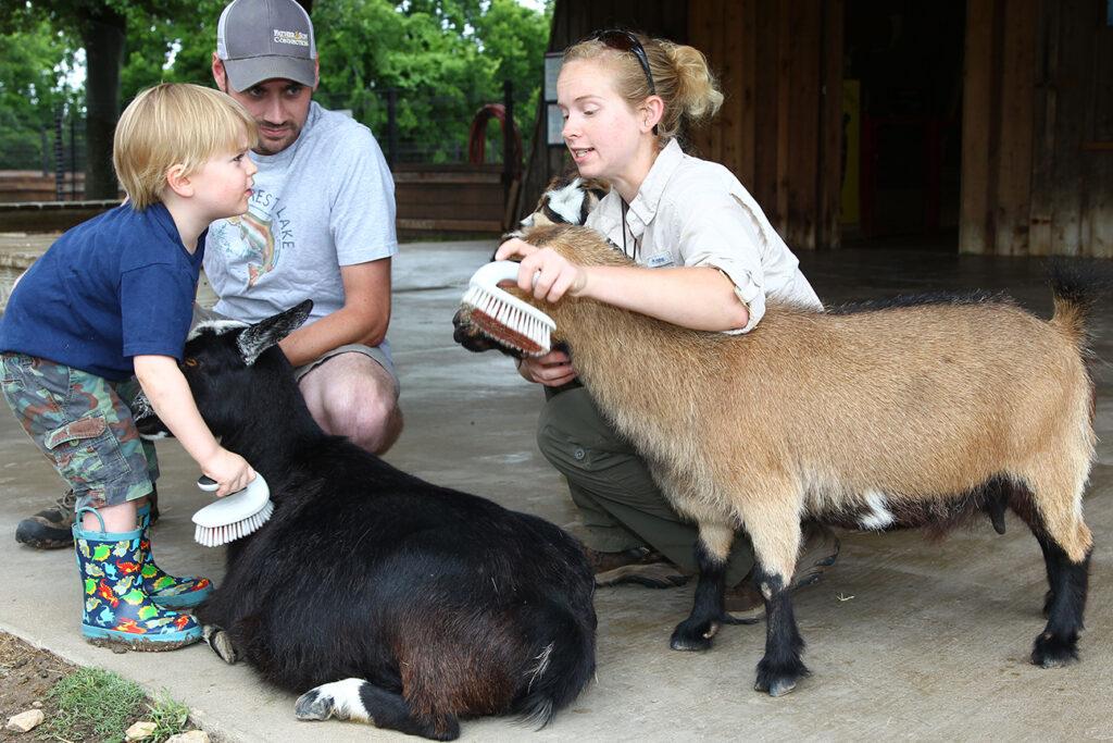 Kristina and kid brush goats